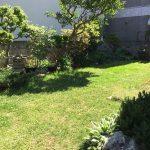 南側の庭は陽当り良好